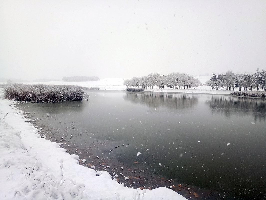 dioni-snow-1