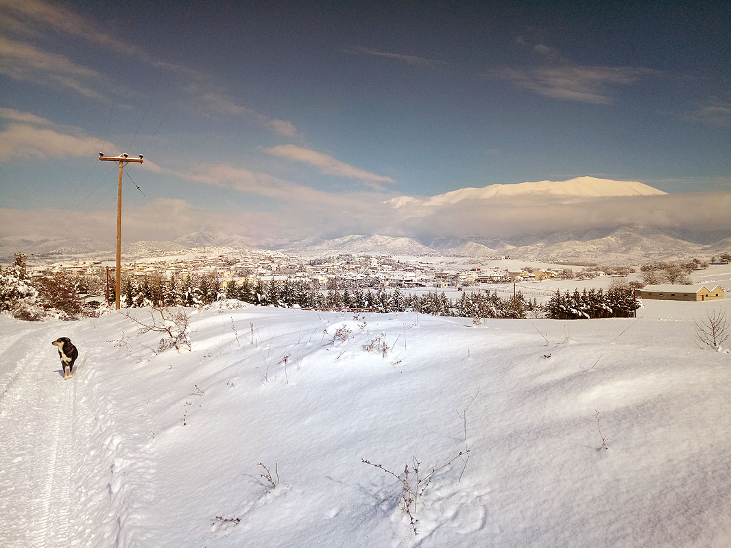 dioni-snow-2
